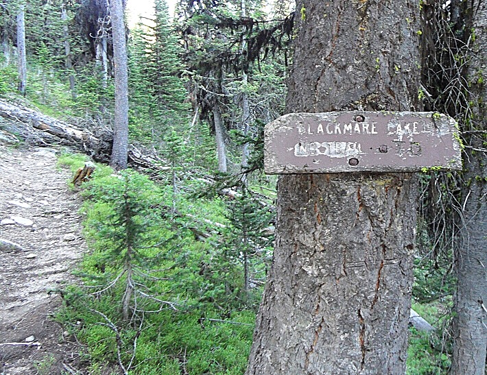 """This sign marks the beginning of the unofficial trail to Blackmare Lake. John points out it is difficult to read but it says """"Blackmare Lake No Trail."""" John Platt Photo"""
