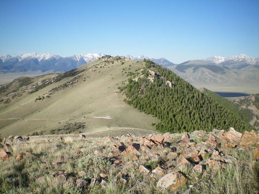 Peak 7910 viewed from the north. Livingston Douglas Photo