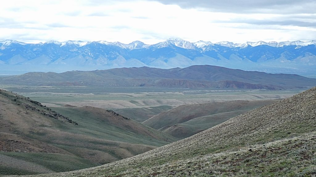 The middle and southern end of the Red Hills viewed from the west. The Lemhi Range is in the background.
