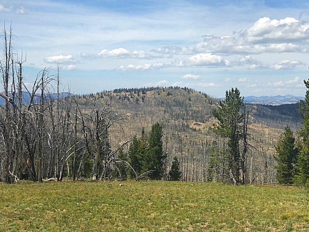 Peak 8681 viewed from Peak 8658. The south ridge is on the left.