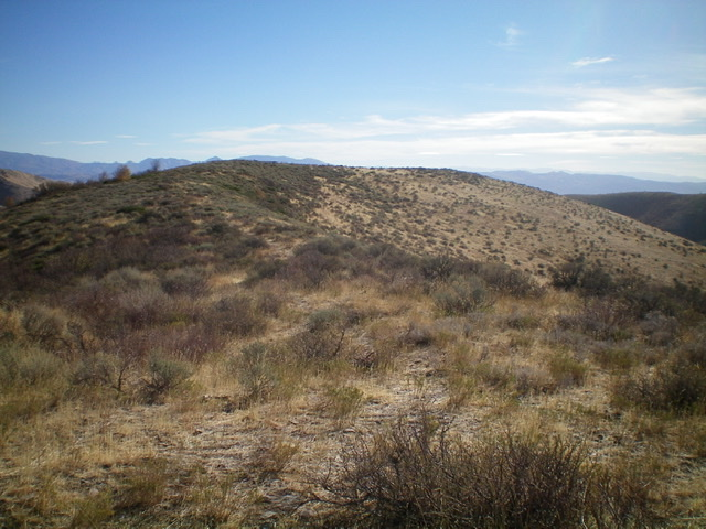 Looking east at the curved summit plateau of Peak 6150 from high on the east ridge. The high point is left of center in the thick sagebrush. Livingston Douglas Photo