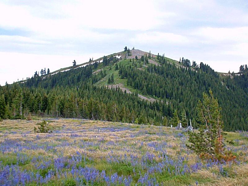 Peak 6180, the Benewah County High Point. Dan Robbins Photo