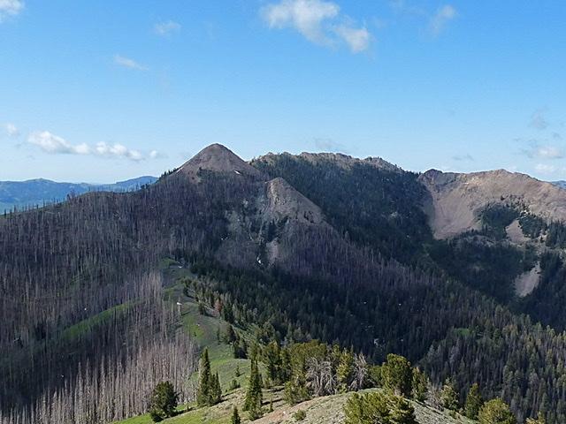 Peak 9315 viewed from Dollarhide Mountain.