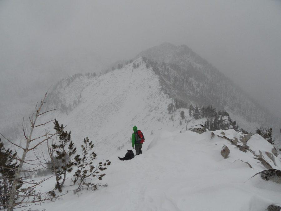 Peak 8796 (Dogslide Peak). John Platt Photo