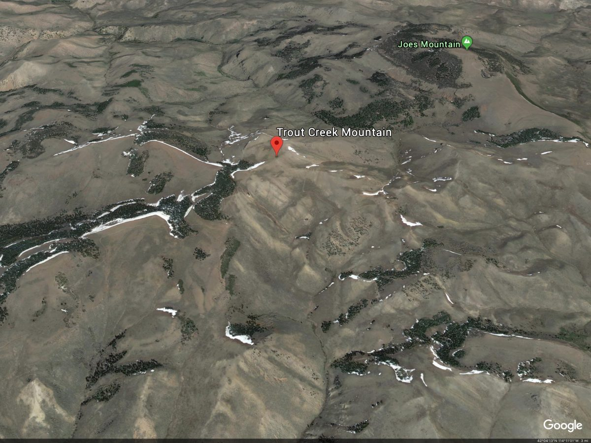 Trout Creek Mountain. Google Earth Image
