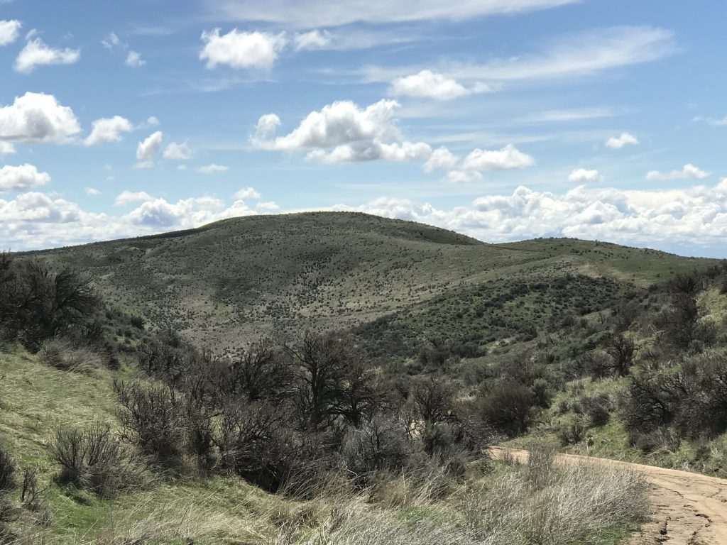 Highland Mountain viewed from the north.