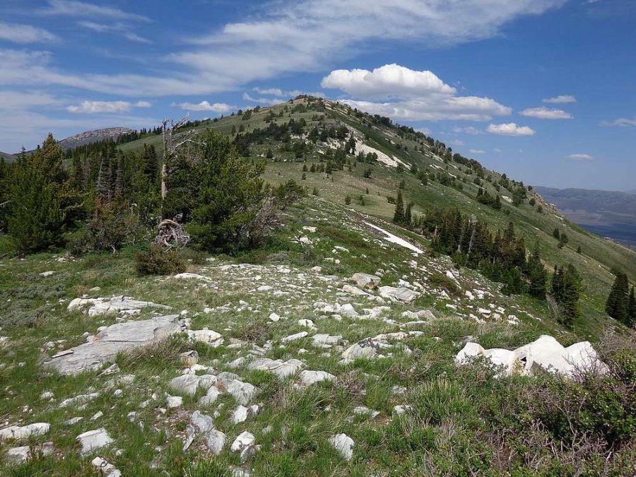 Stines Peak. Dave Pahlas Photo