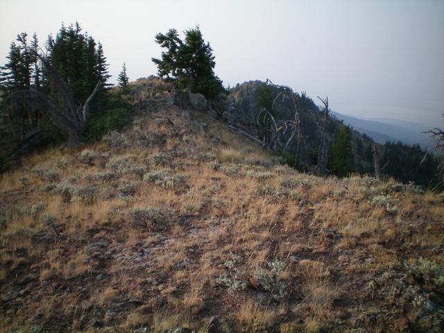 The summit area of Mount Two Top. Livingston Douglas Photo