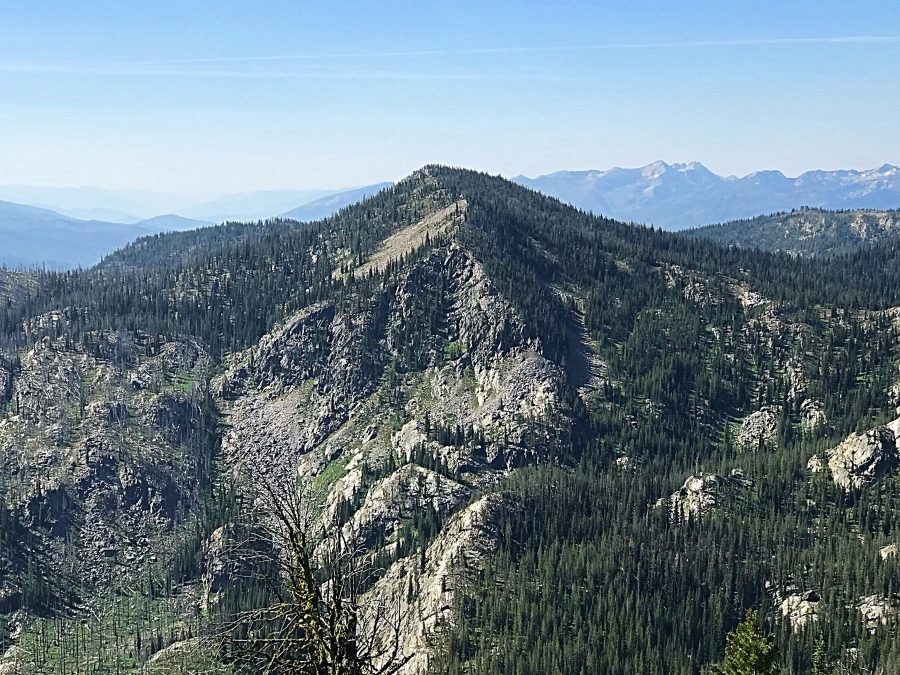 Marshall Fin viewed from Marshall Mountain.