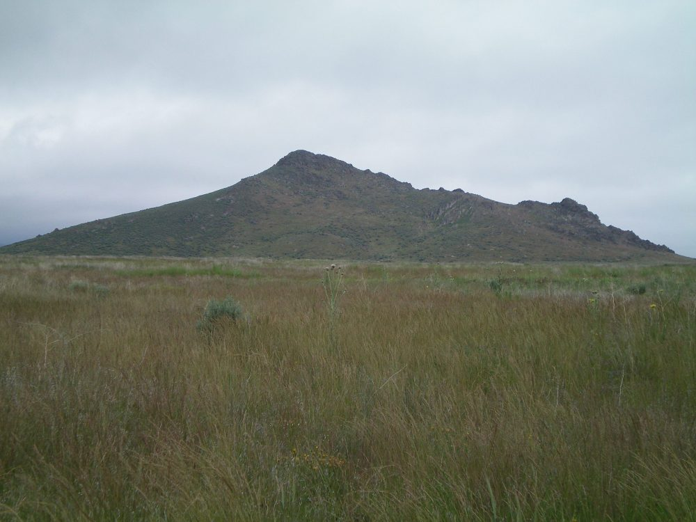 Peak 5273 as viewed from the open, grassy field to its west. Livingston Douglas Photo
