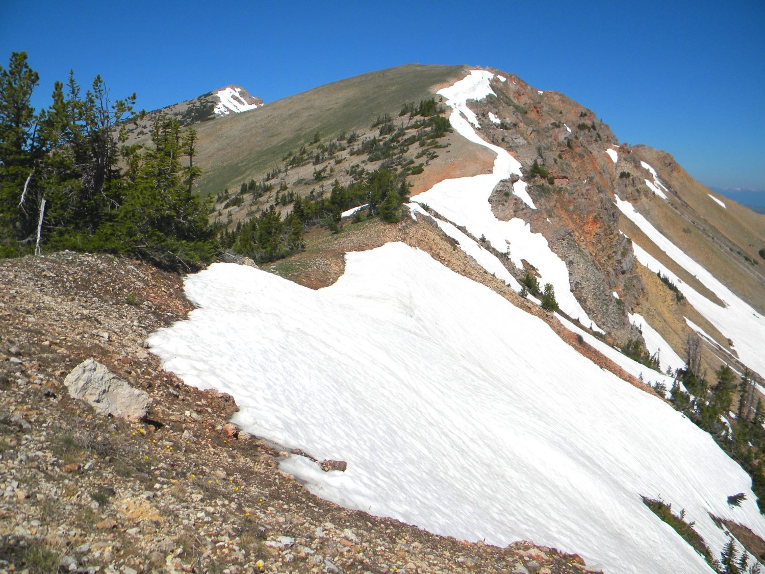 This photo was taken near where the trail left the ridge for the basin to the north. Crosscounty hiking from here is relatively easy. The high point visible at left center. The larger lump dominating the photo is unnamed ridge point, 9,800'. June 2009