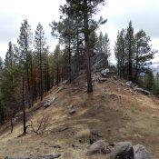 The summit of Kelly Mountain. John Platt Photo