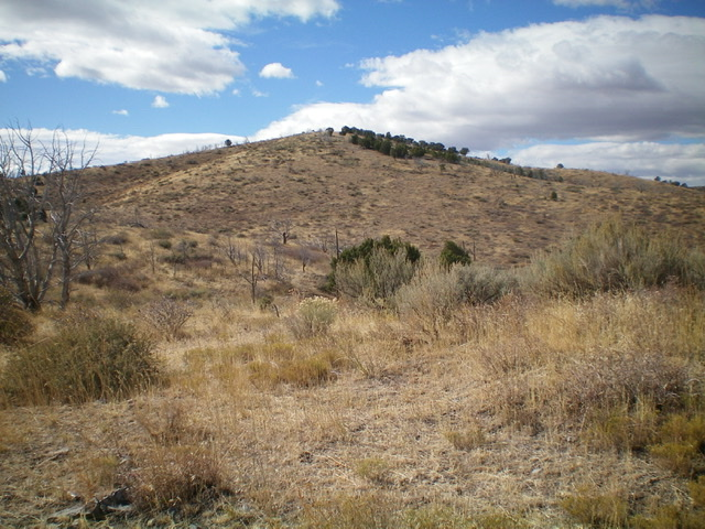 Peak 6165 as viewed from the northeast. Livingston Douglas Photo