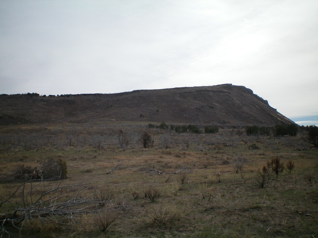 Table Mountain and its northwest face. The summit is at far right. Livingston Douglas Photo