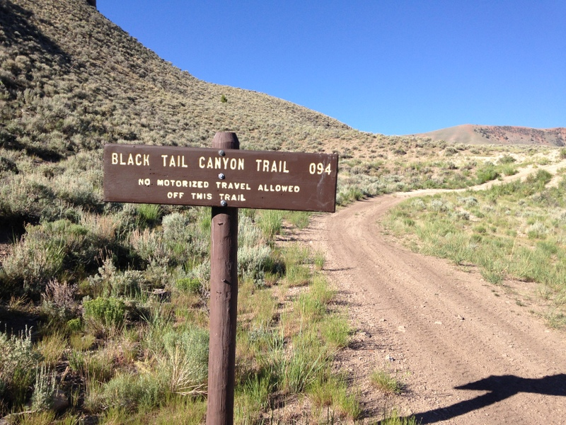 The USGS maps call the canyon Mud Lake Canyon but the Forest Service calls the trail the Black Tail Canyon Trail. It is passable for ATVs and self propelled travel. This sign is found just off the main road.