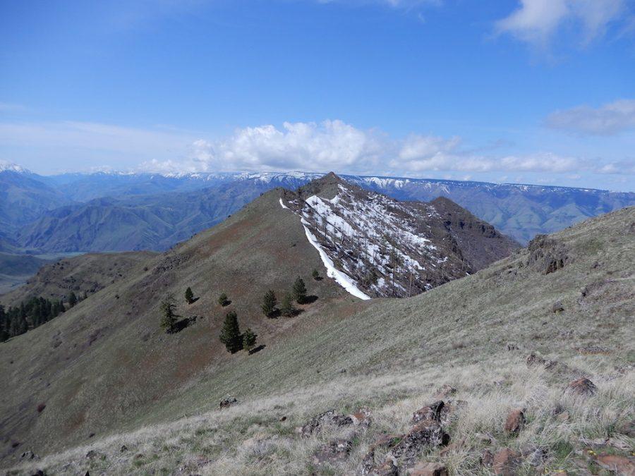 Wild Horse Butte viewed from the east. John Platt Photo