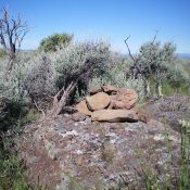 The summit cairn atop Clay Bank Hills HP with the ever-present thick sagebrush nearby. Livingston Douglas Photo