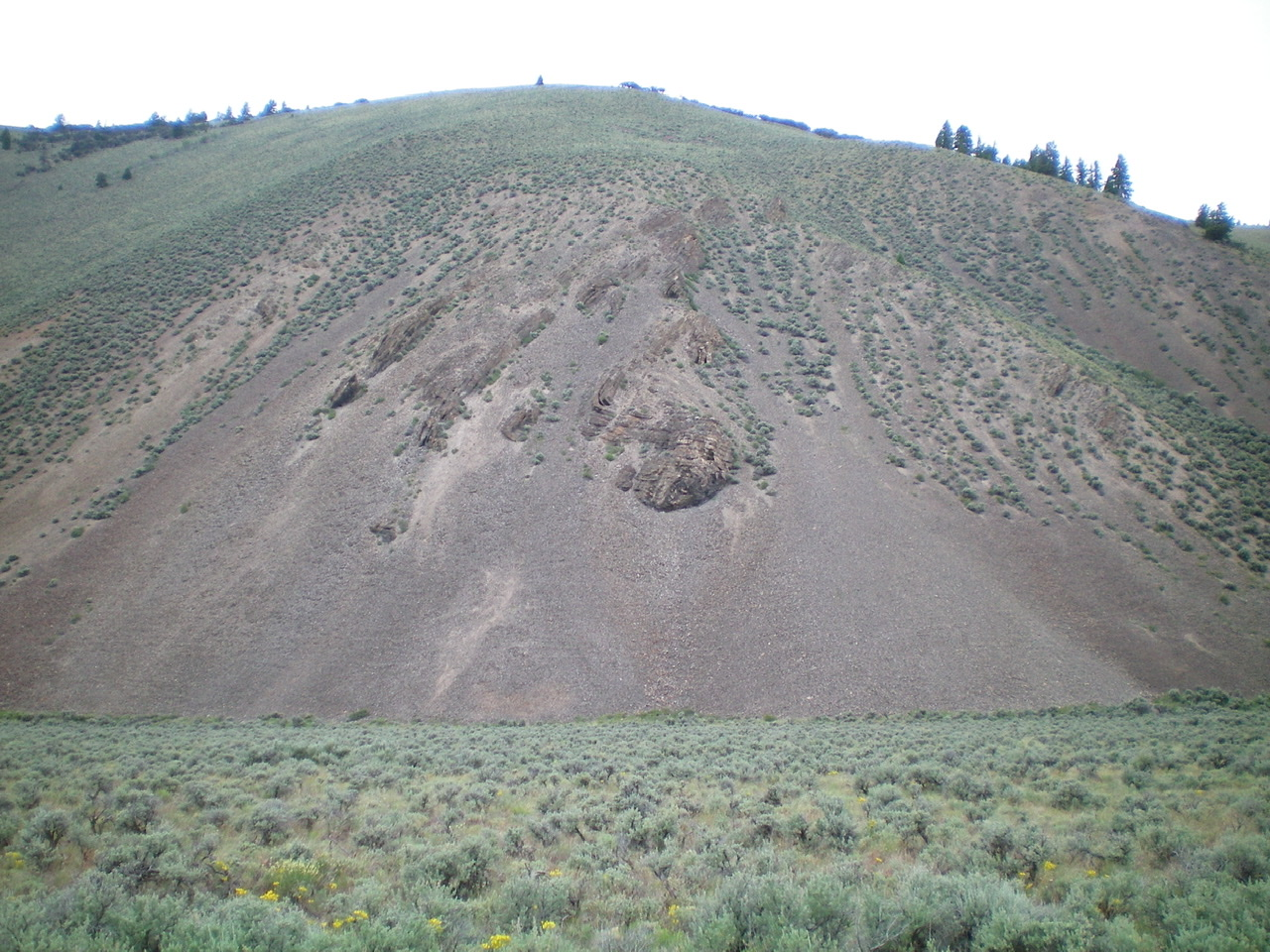 The Southeast Shoulder of Peak 8700 as viewed from its base along Trail Creek Road. The rocky outcrop in dead-center must be skirted in a steep gully on its N side. The final boot-ski down the loose scree (below the rocky outcrop) is delightful. Livingston Douglas Photo