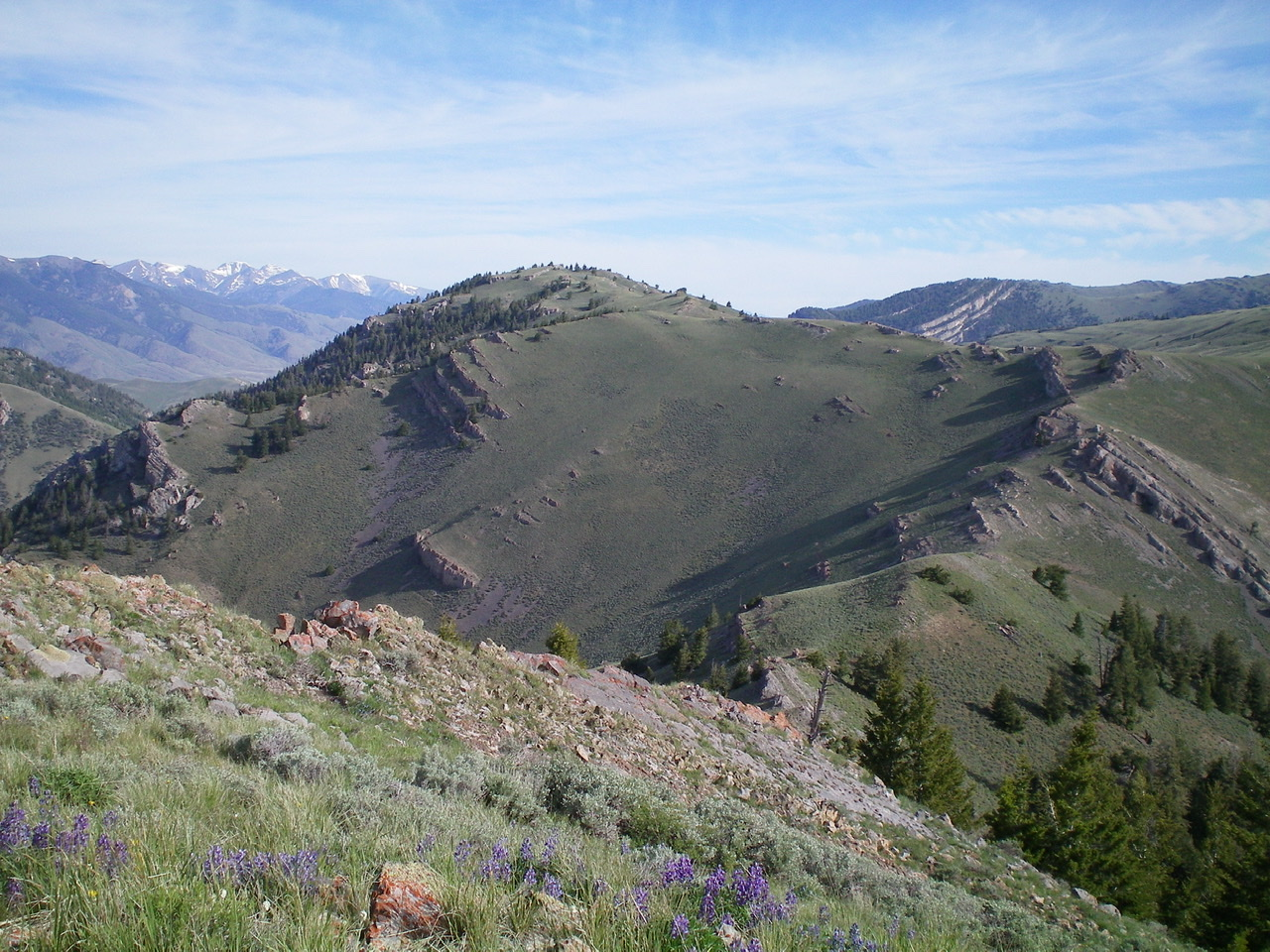Peak 8603 (far left), its Southeast Ridge (leading up to it from the right), and the rocky South Segment of the ridge (right of center) coming up from the connecting saddle with Peak 8383. Viewed from the summit of Peak 8383. Livingston Douglas Photo