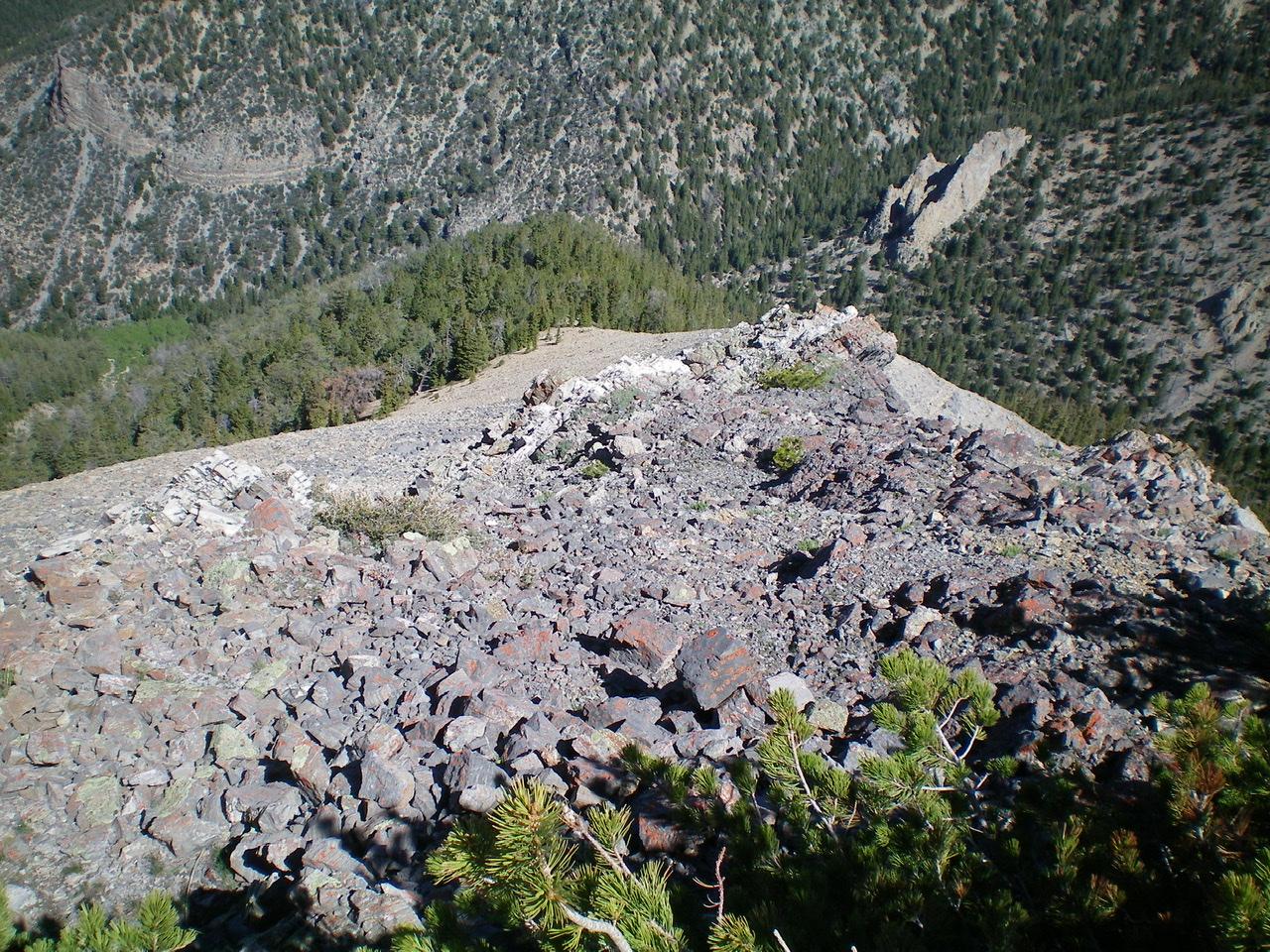 Looking down the steep Northwest Ridge of Peak 10104 from the summit. Livingston Douglas Photo