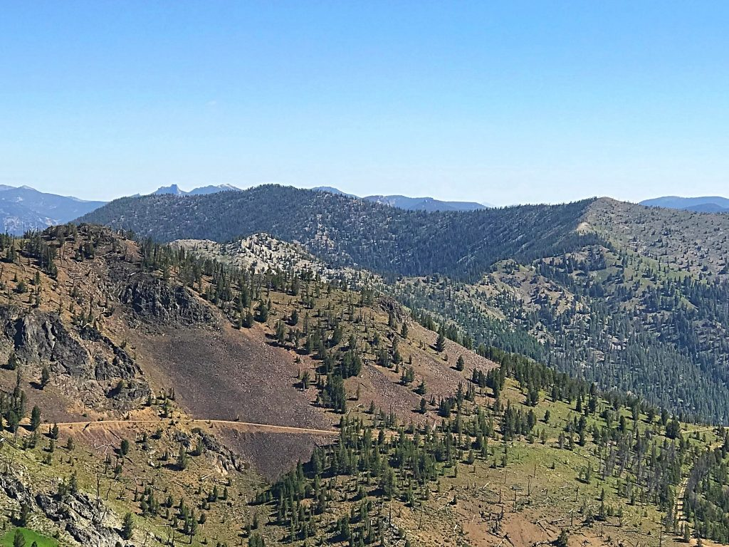 Peak 9187, the highest Yellowjacket summit viewed from Middle Fork Peak and over the shoulder of Peak 9101.