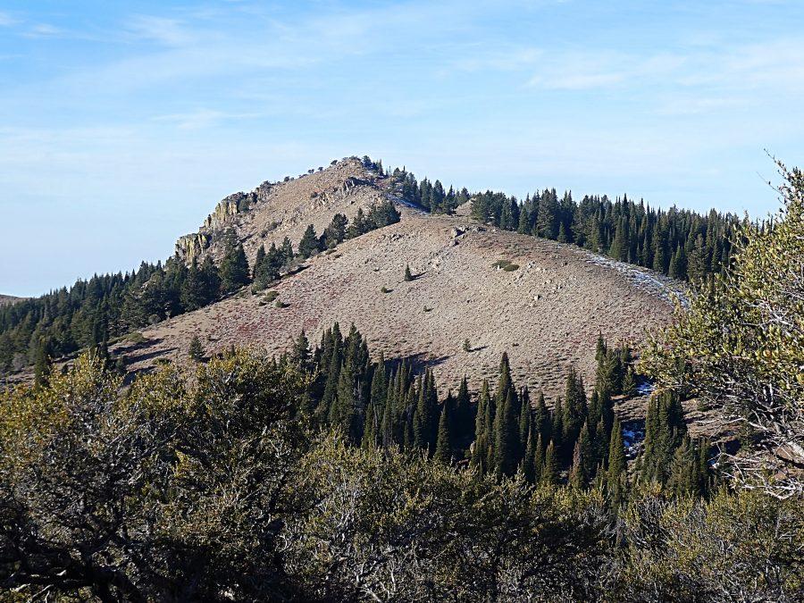 The north ridge of Peak 8021.