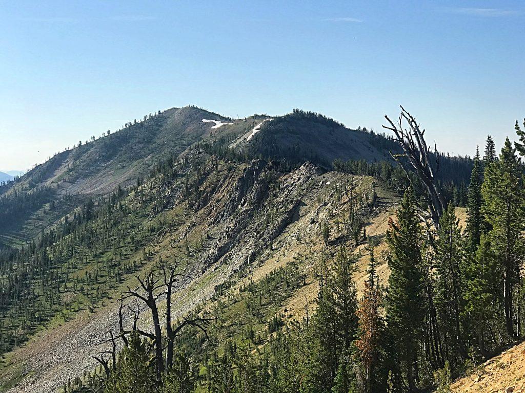 Mount Eldridge viewed from just above Elk Summit.