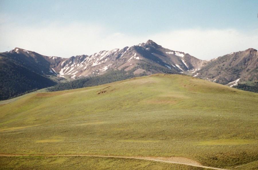 Copper Basin Knob.