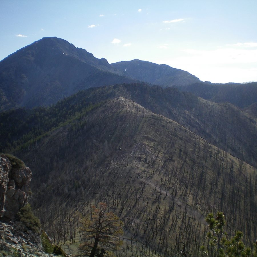 View of burn-scarred Peak 9151 (left of center, foreground) from the summit of Peak 9044. Saddle Mountain is in the distance. Livingston Douglas Photo