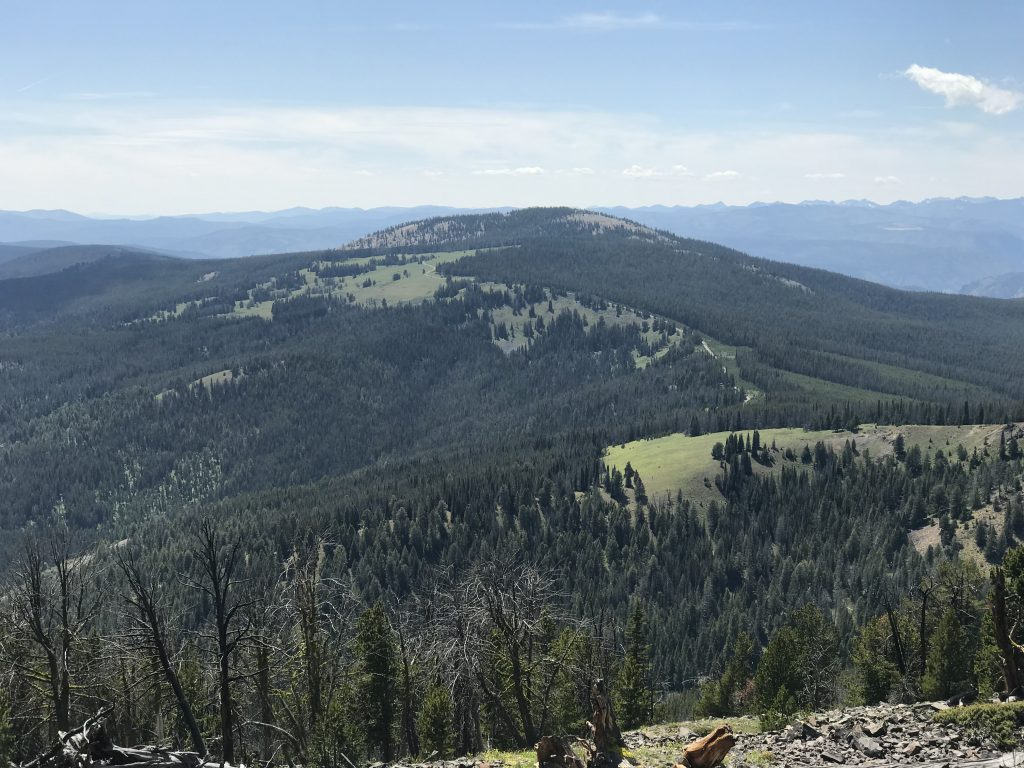 Phelan Mountain viewed from Baldy.