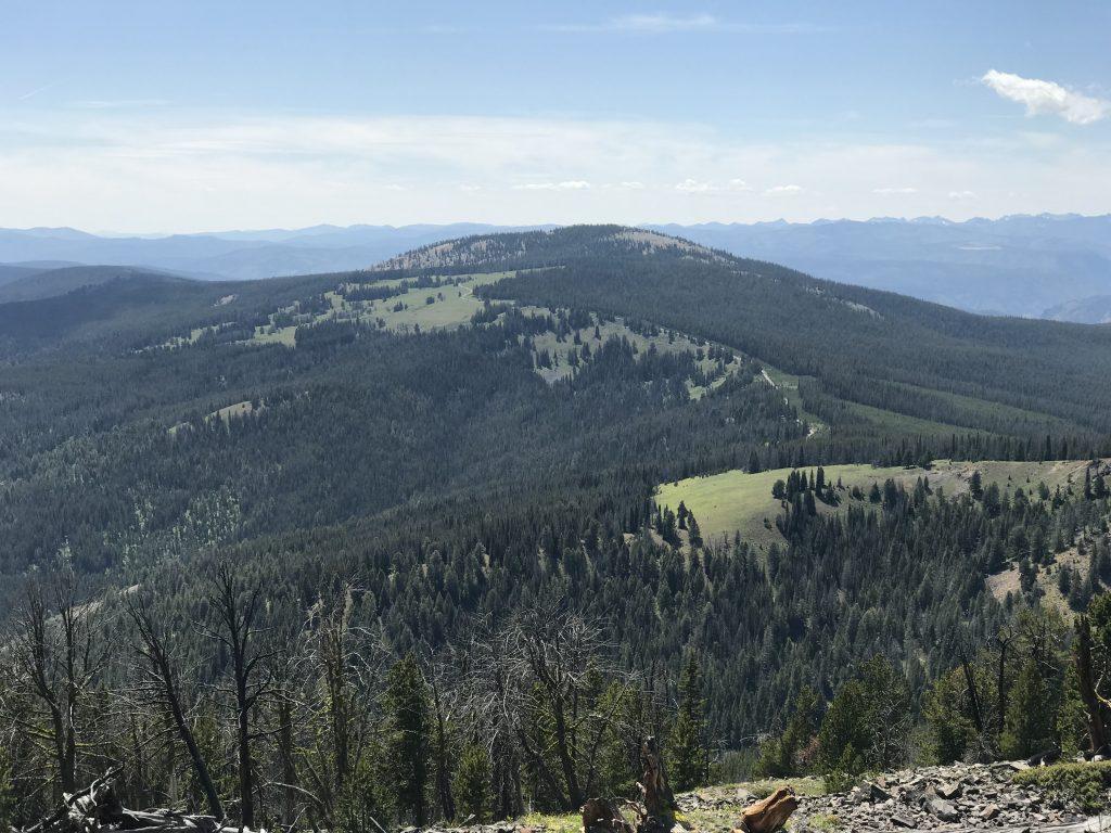 Phelan Mountain viewed from Baldy.