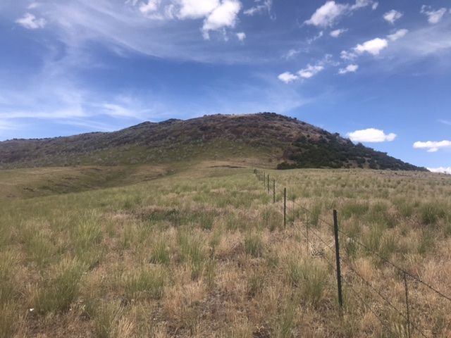 The west face of Red Rock Mountain.