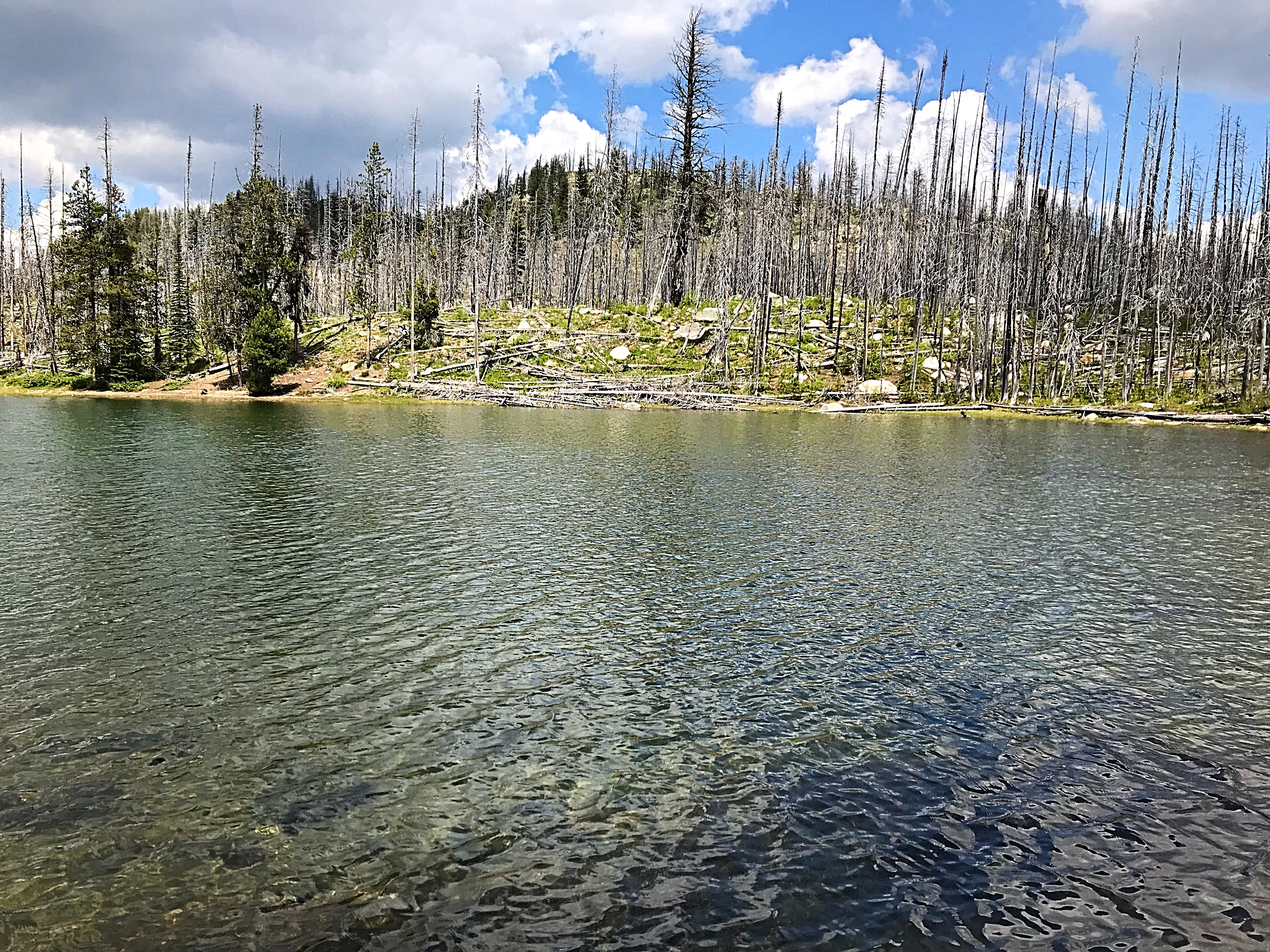 Summit Lake.