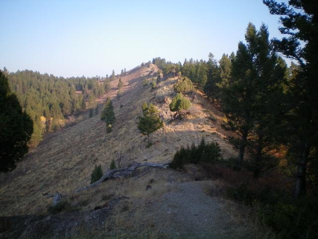 Peak 7620 North as viewed from the rocky, narrow southeast ridge. The summit is dead ahead. Livingston Douglas Photo