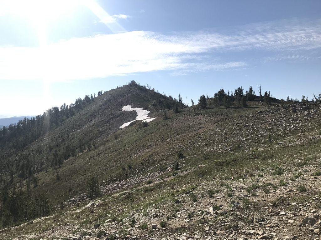 The upper slopes of Mount Eldridge.