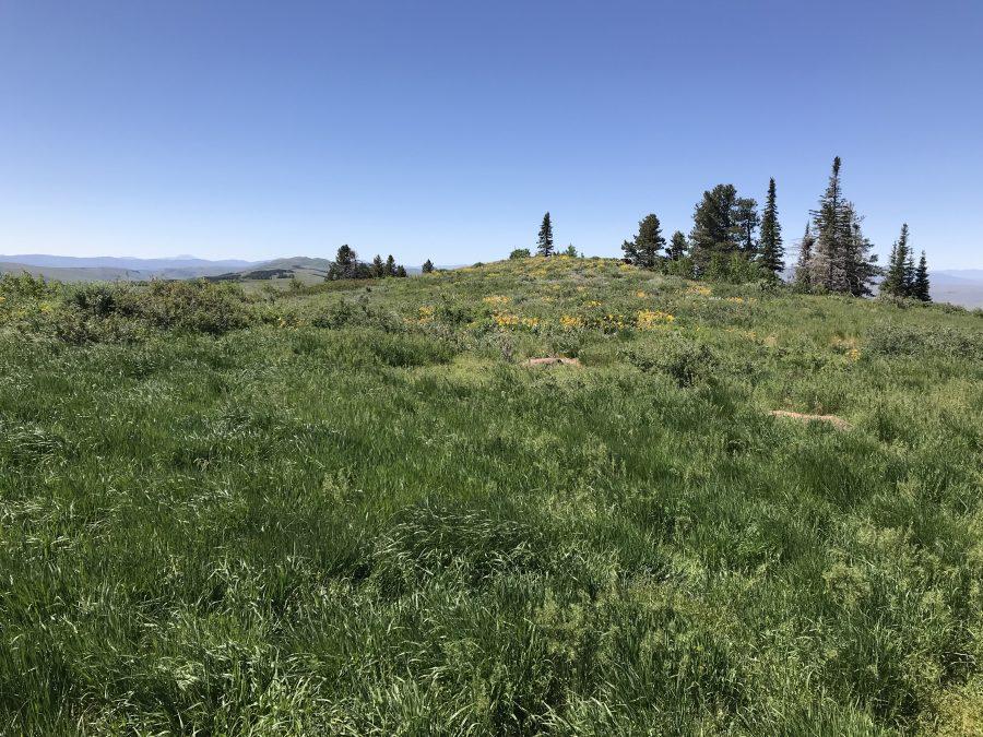 The summit of North Deadline Ridge.