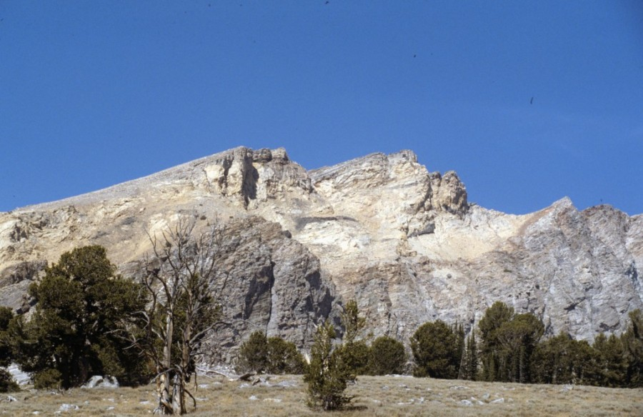 Duncan Peak aka Duncan Ridge.