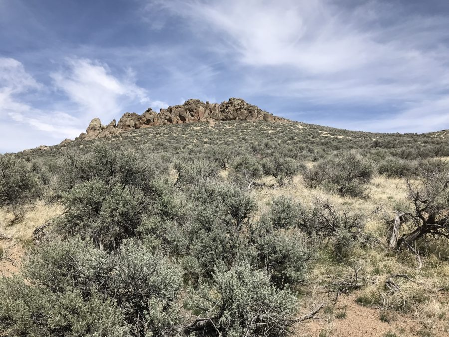 The summit of Dinosaur Ridge is found in this cluster of rocks.