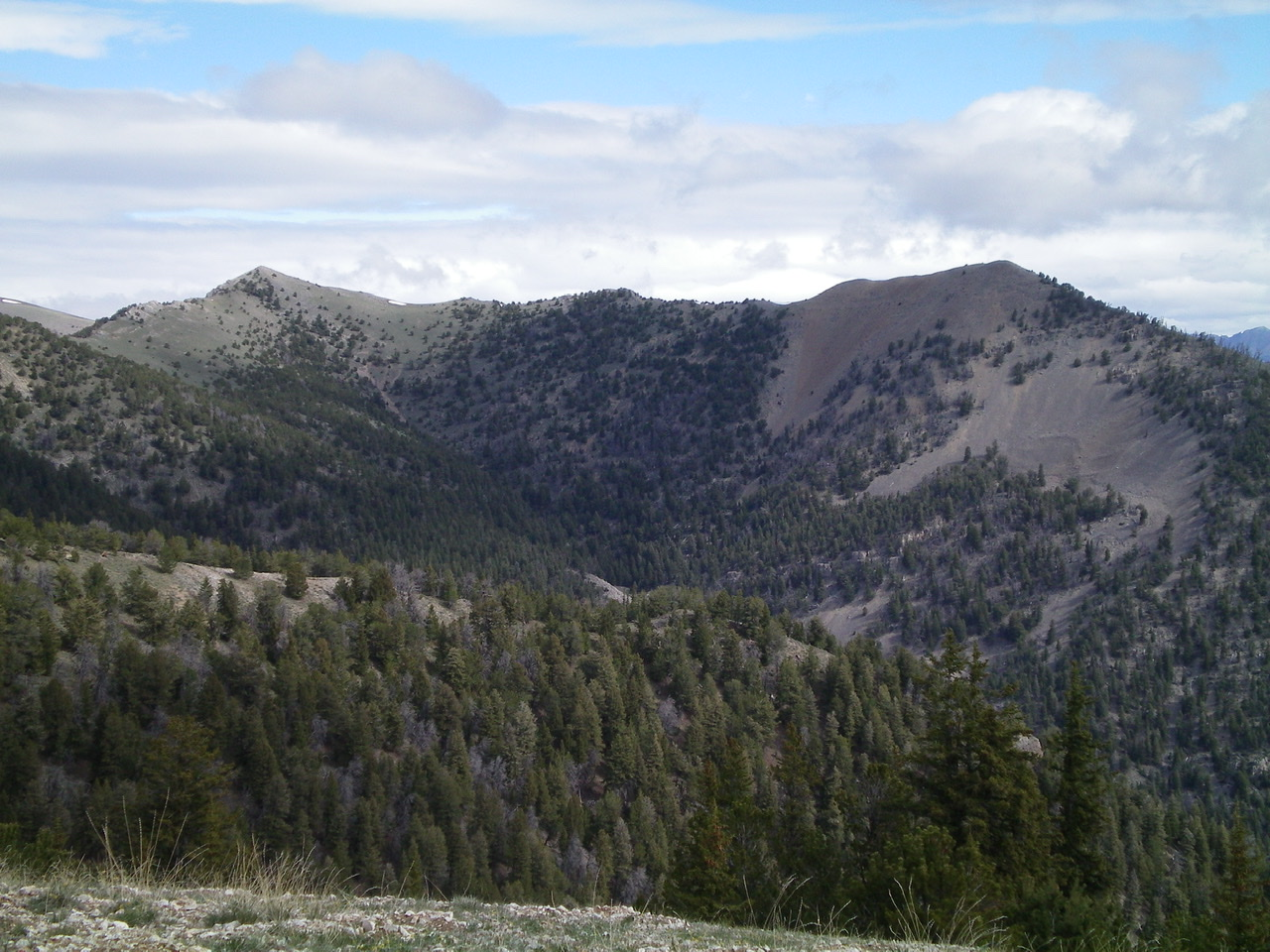 Peak 9877 (left) and Gallagher Peak (right) and the tedious connecting ridge between them. Livingston Douglas Photo