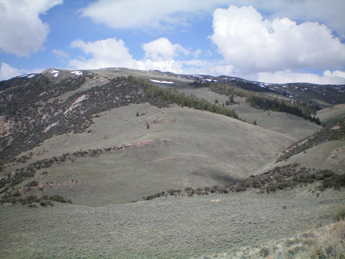 A view of the East Spur and South Ridge of Peak 8923 from the parking spot. The East Spur is dead center and bends left-ish to join the South Ridge. The South Ridge is on the skyline and heads R/N to reach the summit. Avoid the gully to the R of the East Spur as it is on private land. Livingston Douglas Photo