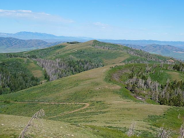 Peak 7695 viewed from Samaria Mountain.