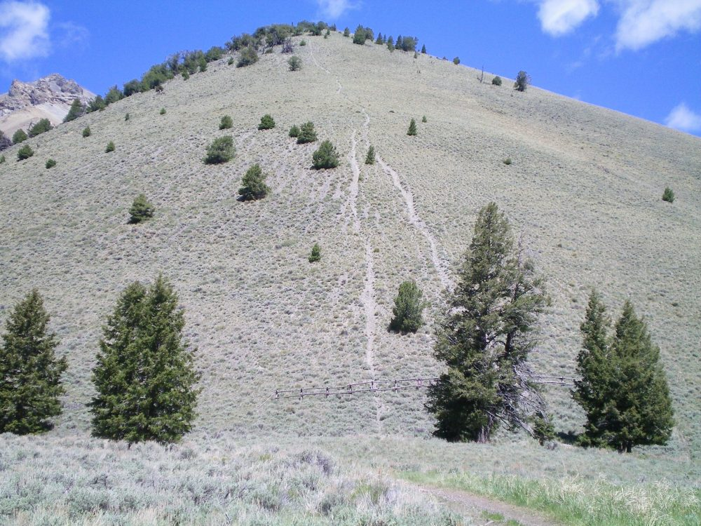 The bottom section of the Southeast Ridge and the illegal MC trail that goes straight up the steep slope. Livingston Douglas Photo