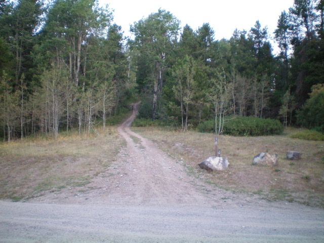 The start of FST-294 (an ATV trail) and the short hike up to the summit area of Windy Ridge. Livingston Douglas Photo