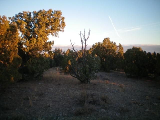 The true summit of Peak 5550 in the early-morning sun. Livingston Douglas Photo