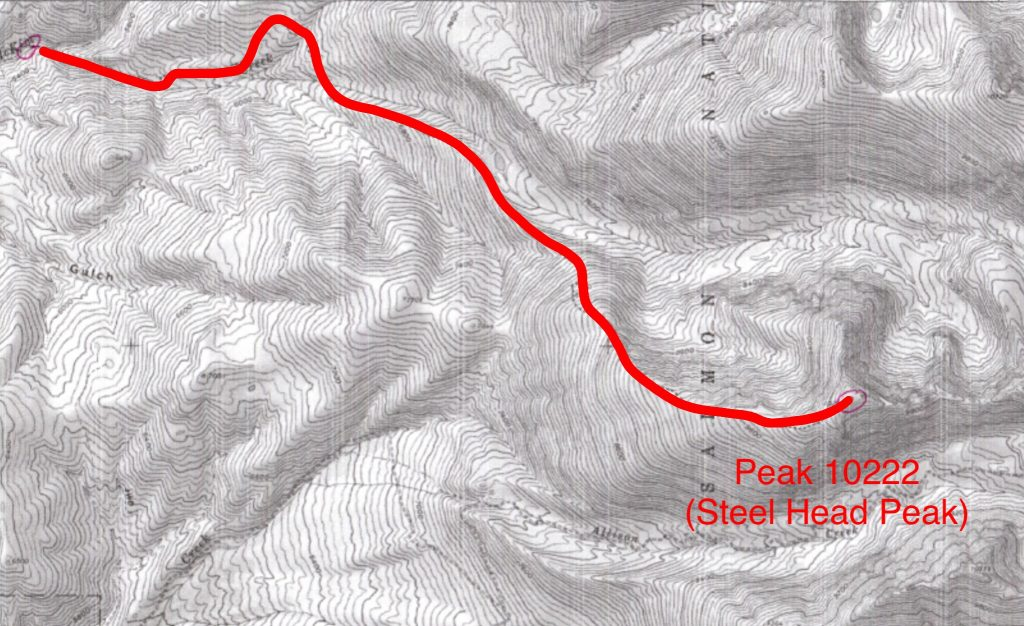 Jeff's approximate route up the McKim drainage and the northeast ridge.