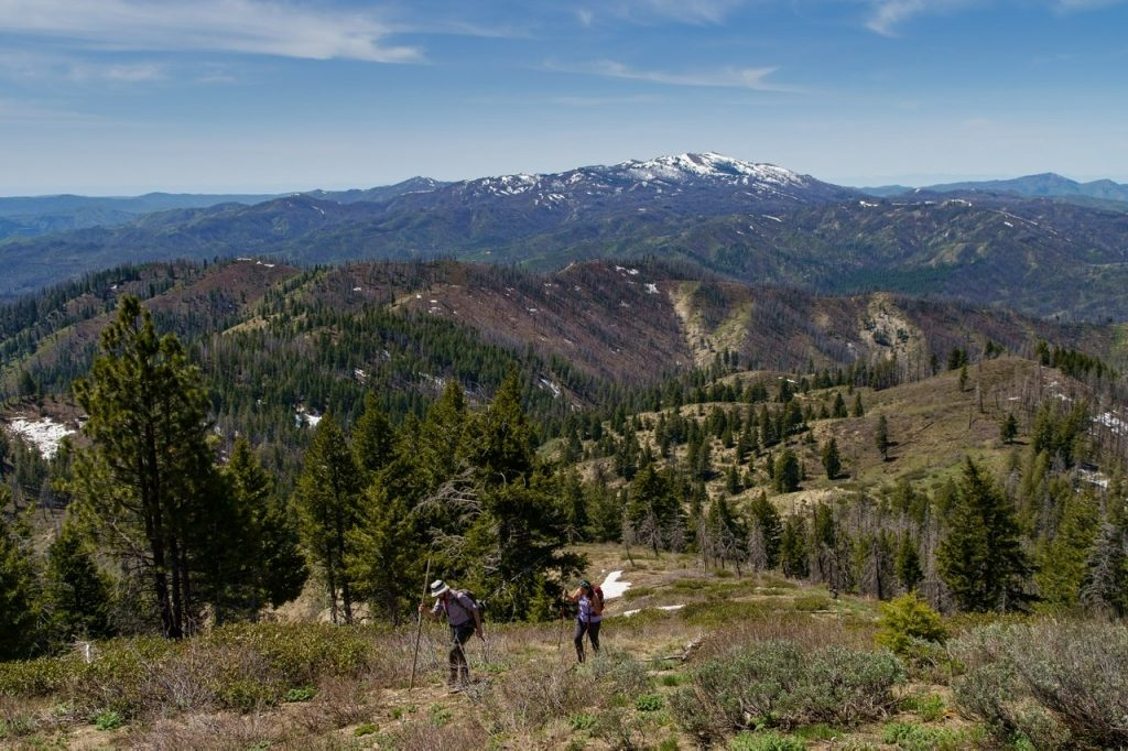 Bushwhacking up the southwest ridge with Granite and House Mountain visible in the distance. Anna Gorin Photo