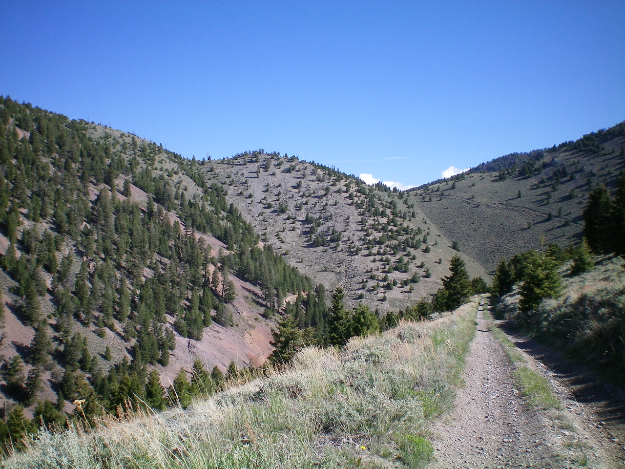 Peak 8963 viewed from Long Canyon Road/Trail to the South. The summit is just left of center. Livingston Douglas Photo