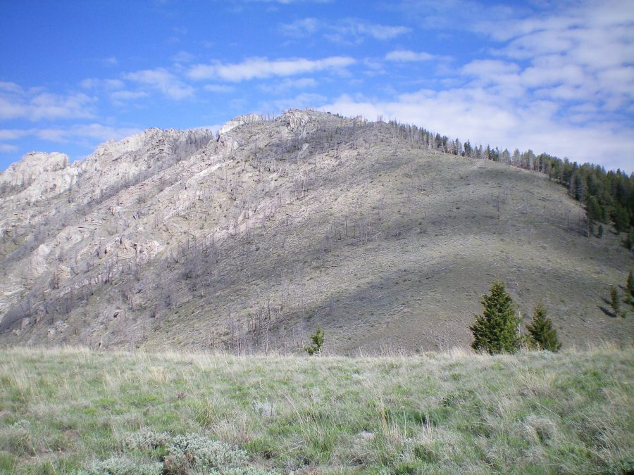 Peak 9085 as viewed from Saddle #1 at the head of Spring Canyon. The summit is the hump in the center of the photo. The rugged towers of the Southwest Ridge are to the left of the summit hump. Livingston Douglas Photo