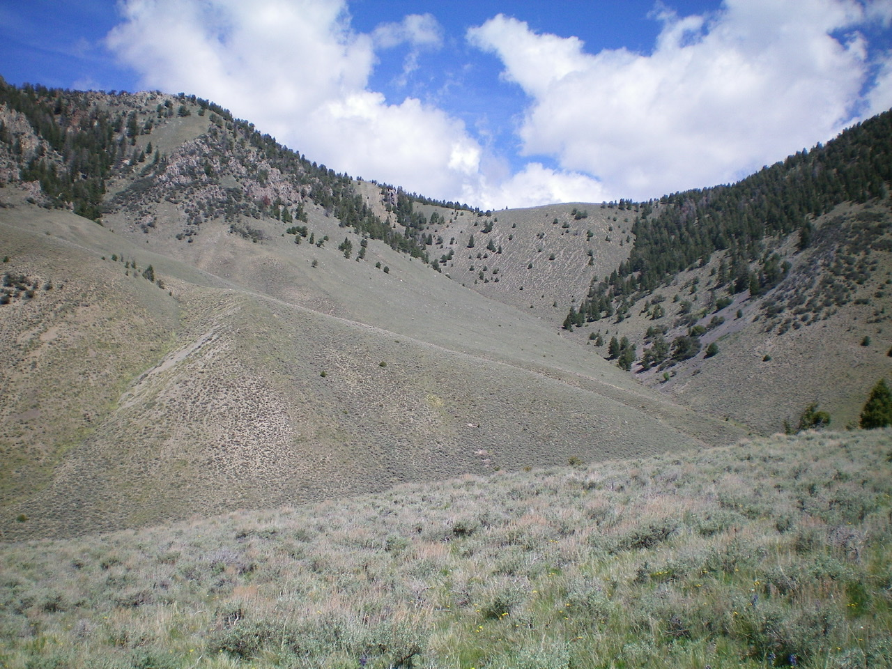 View of the East Gully of Peak 8923. The summit is in the upper left of the photo. Livingston Douglas Photo