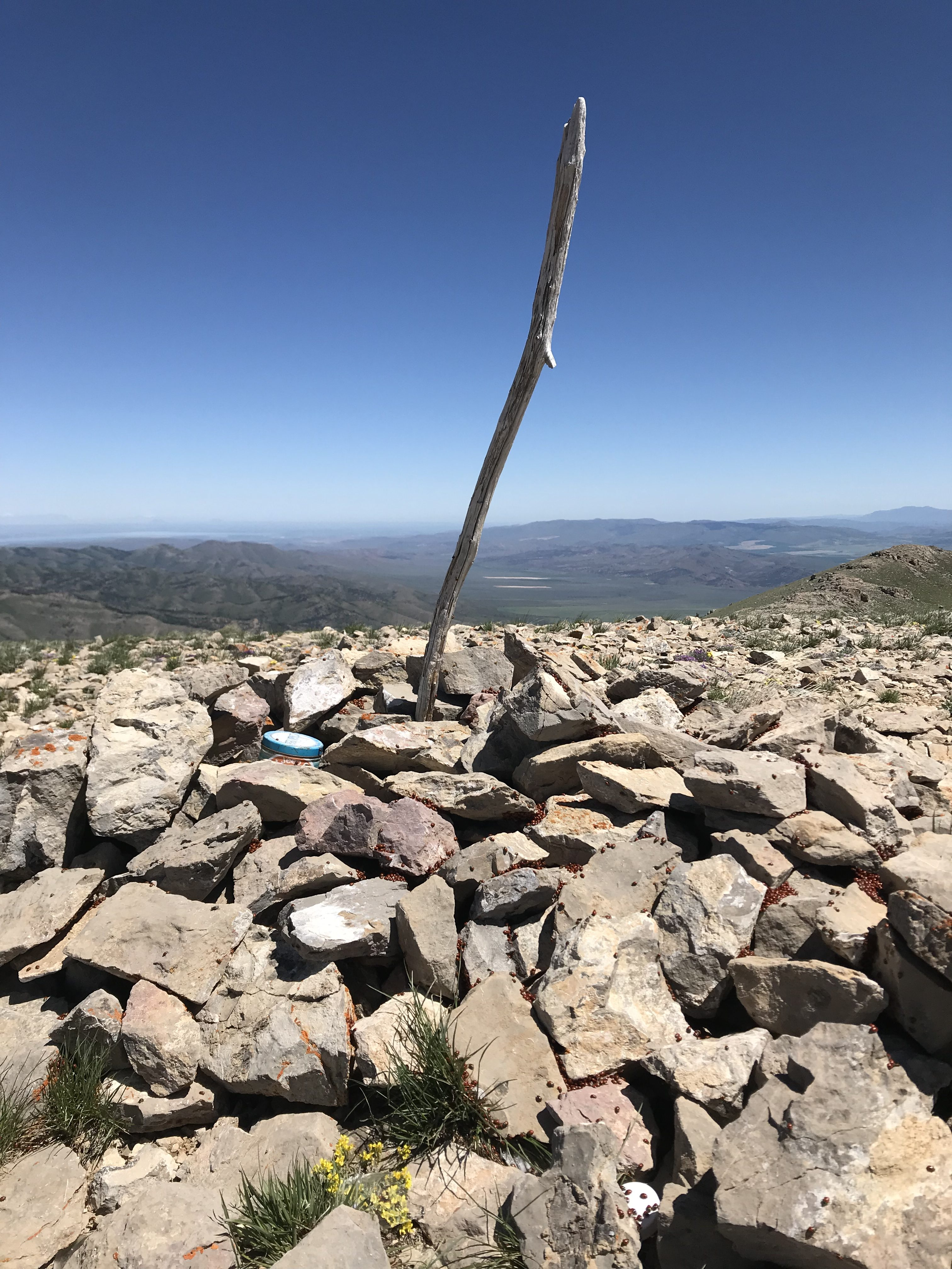 The summit cairn had three registers.